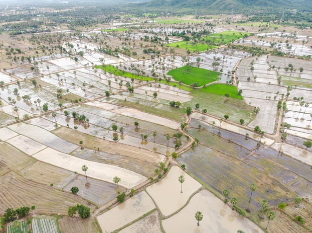 Flooded agricultural area in thailand