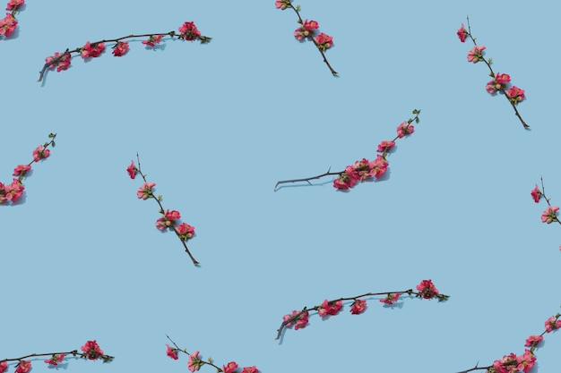 パステルブルーの表面にピンクの花の枝で作られたフラワーアレンジメント