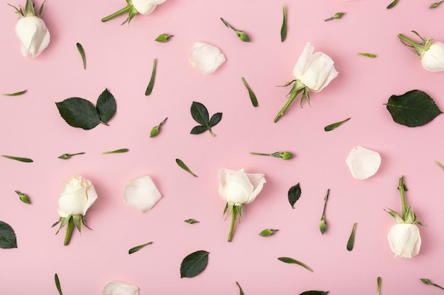 Floral arrangement of roses on pink background