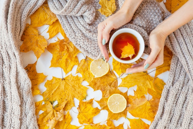 Floral autumn background. a mug of tea in a woman's hand with yellow falling leaves maple. autumn season. flat lay fashion drink composition. woman hands holding a cup. grey scarf and lemons