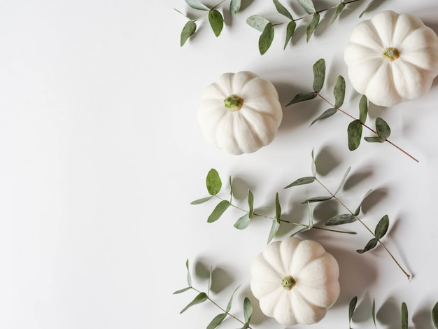Floral autumn composition of pumpkins and eucalyptus on a white background.