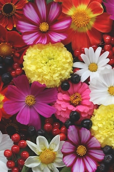 花の背景、上面図。さまざまな庭の花やベリー、自然の背景。