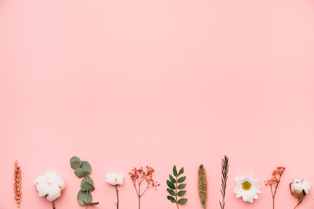 Floral background with botanical elements on bottom