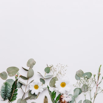 Floral background with space on top