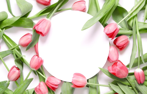 Floral background with tulips flowers on white background.