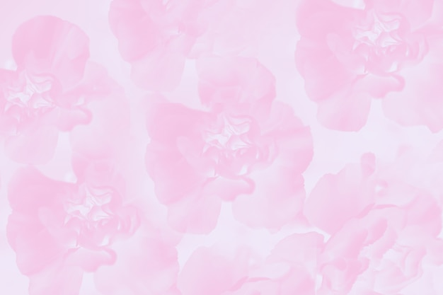 花のカーネーションの花柄、淡いピンク