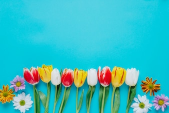 Floral composition of blue backdrop