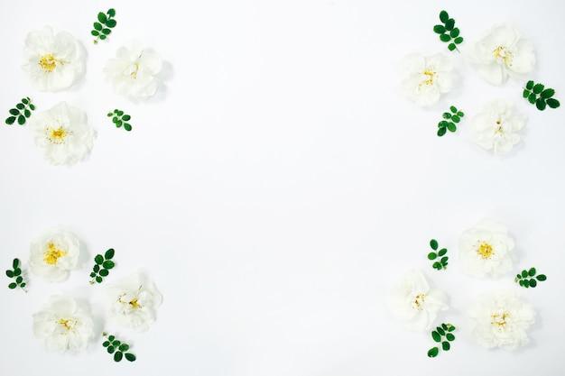 花の組成。白い背景に白い花のバラ。春、夏のコンセプト。フラットレイ、上面図、コピースペース。