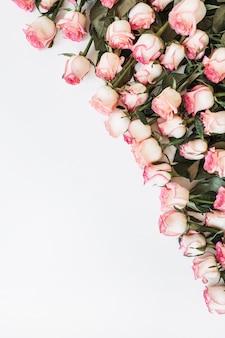 Цветочная композиция с множеством розовых роз на белом фоне