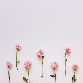 Цветочная композиция с розовыми цветами на дне