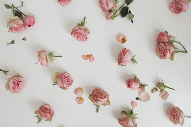 白にピンクのバラと花の組成