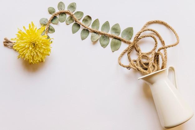ロープと花の組成