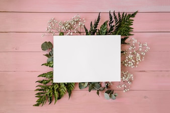 Floral composition with template and pink background