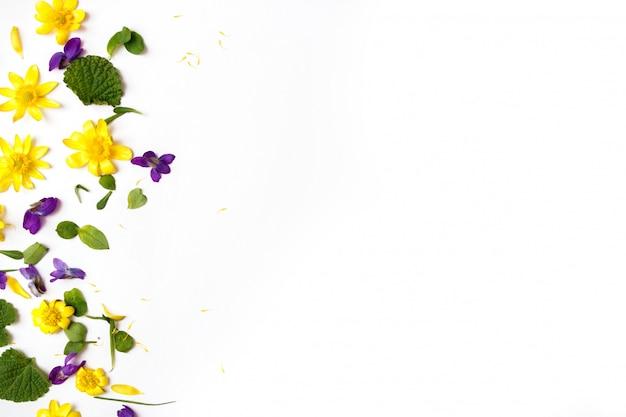 꽃 조성. 흰색 바탕에 노란색과 보라색 꽃입니다. 평평한 누워, 평면도, 복사 공간.