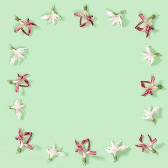 마른 빨간색과 흰색 꽃에서 꽃 장식 프레임