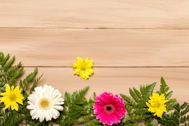 Плоская цветочная планировка из гербер и папоротников