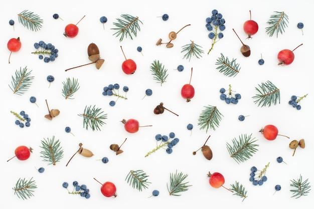 果実、リンゴ、ドングリ、白い表面のトウヒの花の森のパターン