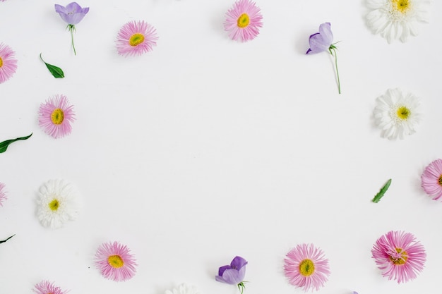 Цветочная рамка из белых и розовых цветов ромашки ромашки, зеленые листья на белом