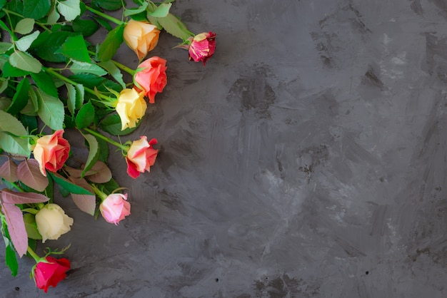 Floral frame with colorful roses on grey/black background, flat lay, top view