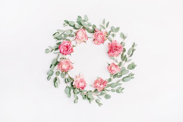 白い背景に赤いバラの花とユーカリの枝の花のフレーム リース。フラットレイ、トップビュー
