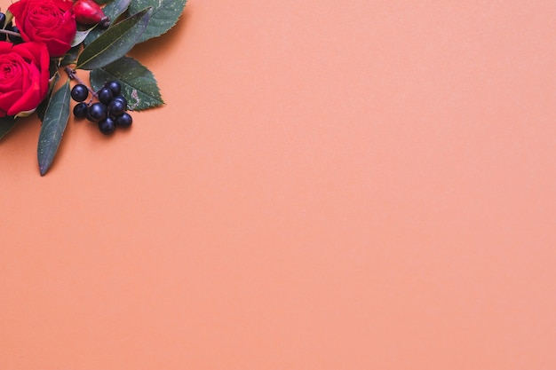 Цветочная открытка красные и черные осенние ягоды, зеленые листья и розы на пастельных кораллах