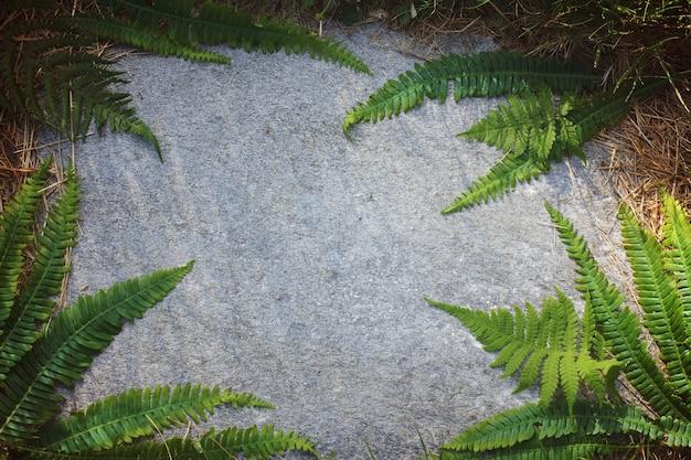 平らな石の上にシダの葉の花飾り