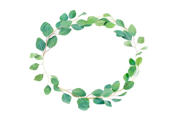 Floral oval frame, eucalyptus leaves on white background.