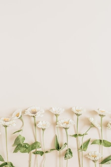 Floral pattern on beige surface