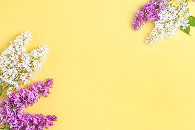 Floral pattern lilac branches and petals on yellow background. frame.