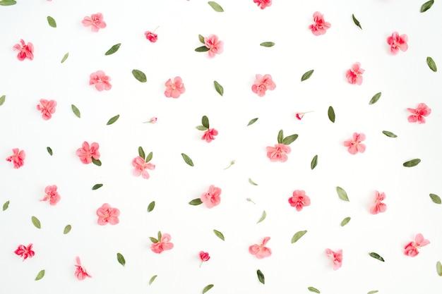 핑크 수국 꽃, 녹색 잎, 흰색 가지로 만든 꽃 패턴