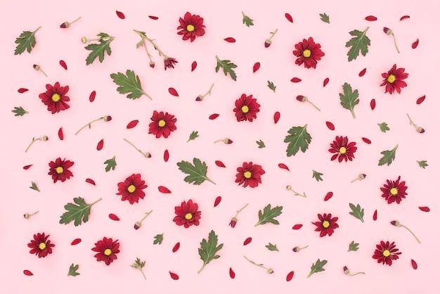 Цветочный узор из красных зеленых листьев хризантемы на розовом фоне