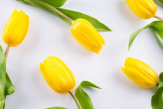 白地に黄色のチューリップの花柄。花柄のテクスチャ。フラット横たわっていた、トップビュー。