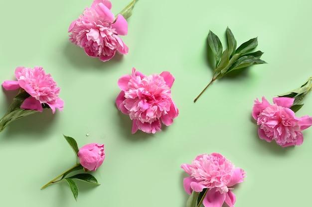 녹색에 분홍색 모란 꽃의 꽃 패턴입니다. 3 월 8 일 또는 어머니의 날 인사말 카드.