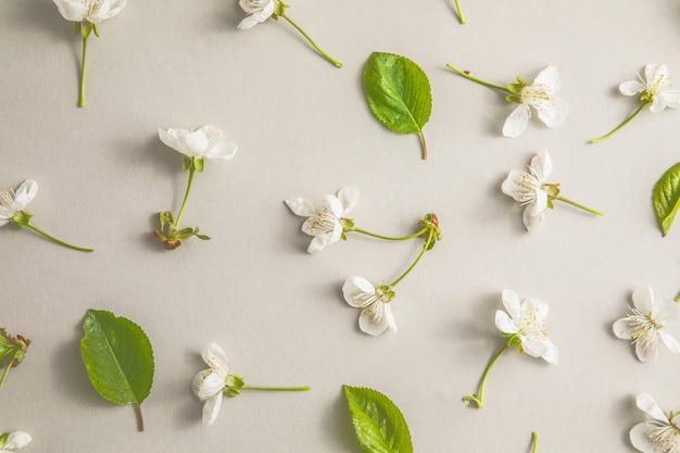 灰色の背景に白い春または夏の花の花柄。テキスト用のスペースをコピーします。フラットレイスタイル。