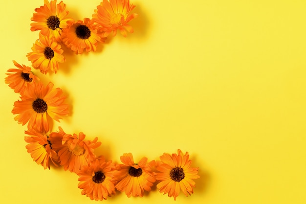 Floral pattern of orange flowers on yellow background.