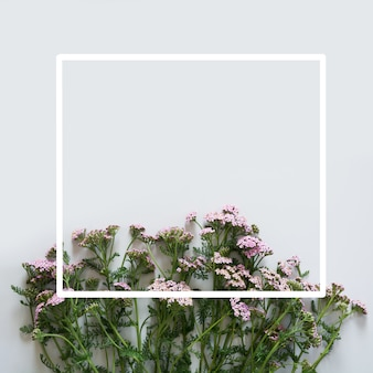 Floral pattern of purple and pink flowers with white frame on grey background. flat lay. view from above.