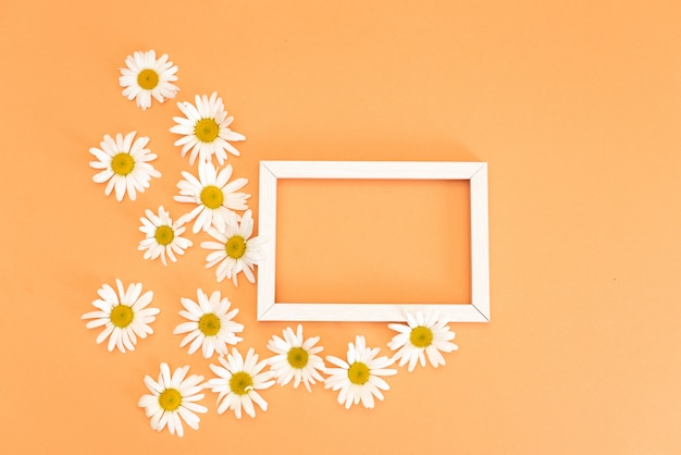 Floral pattern with small daisy flowers leaves and petals