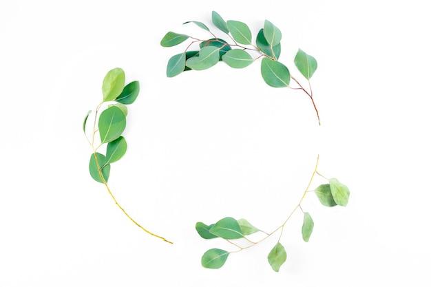 花の丸いフレーム、白い背景にユーカリの葉。