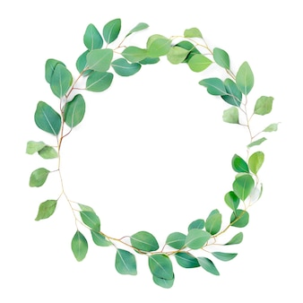 Floral round frame, eucalyptus leaves on white background