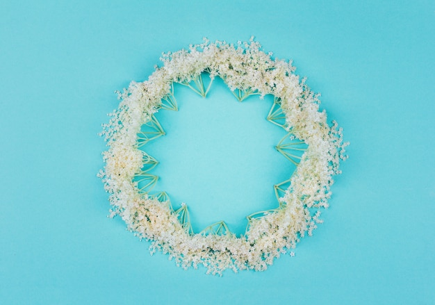 Floral round frame of white elderberry flowers on blue pastel, top view