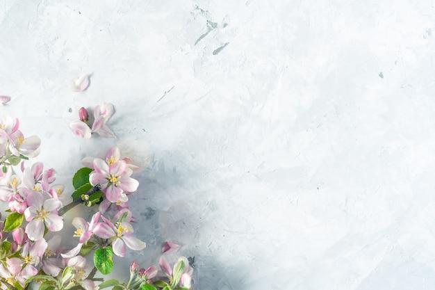 Цветочный весенний фон с разнообразием красочных цветов яблони на бетонном сером фоне сверху