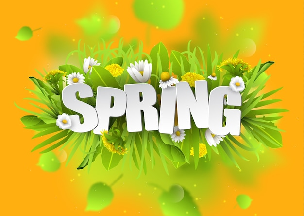 Floral spring typography background with dandelions and chamomiles