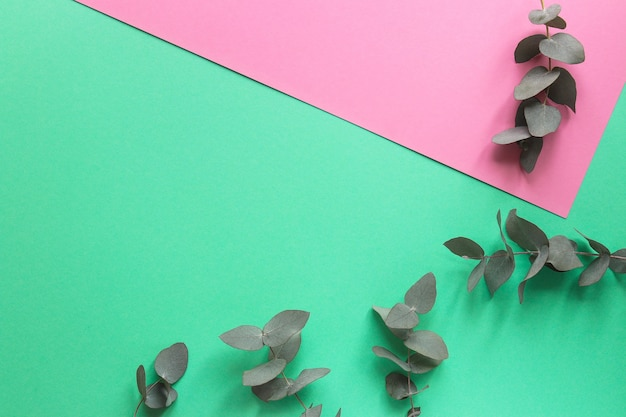 花のトレンディな幾何学的なテクスチャユーカリはアクアマリンに残します