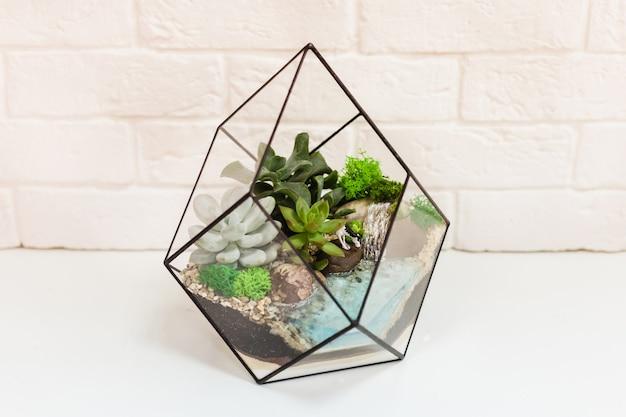 Florarium - composition of succulents, stone, sand and glass, element of interior, home decor, glass terarium
