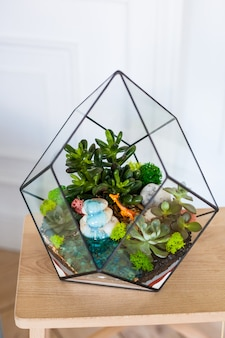 Florarium - composition of succulents, stone, sand and glass, element of interior,  home decor