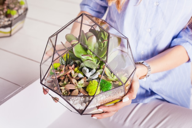 Florarium - composition of succulents, stone, sand and glass, element of interior