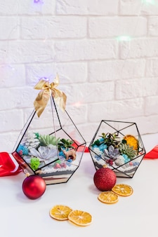 Florarium - composition of succulents, stone, sand and glass with christmas decoration