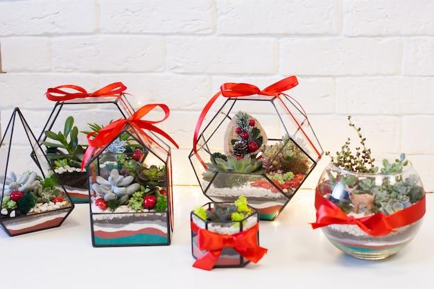 Florarium-多肉植物、石、砂、ガラスの組成、インテリア、家の装飾、クリスマスデラー、新年のプレゼントの要素