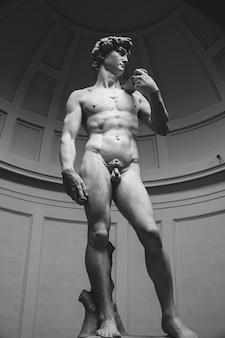 Флоренция, италия - 24 июня 2018 г .: скульптура давида микеланджело, созданная в период между 1501 и 1504 годами в академии изящных искусств флоренции (accademia di belle arti di firenze)