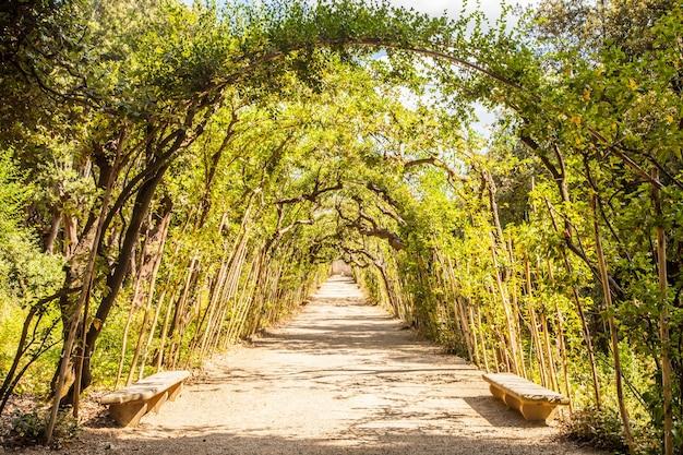이탈리아 피렌체. 여름철 화창한 날의 오래된 보볼리 정원